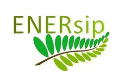 Enersip_Logo